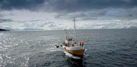 Stord-bygt  skøyte  i  fint  selskap  i  Finnmark